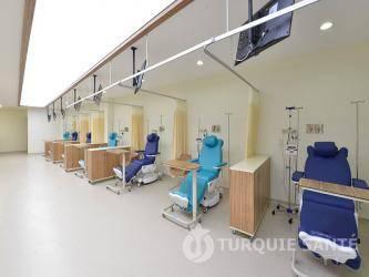 YENIYUZYIL UNIVERSITY GAZIOSMANPASA prix pas cher Médecines Complémentaires Et Alternatives 2